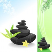 Link toSet of still life with stones design vector graphics 01
