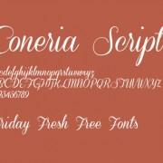 Link toConeria script slanted font