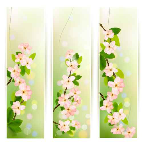 Spring Pink flowers banner vector 02