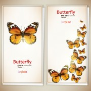 Link toRetro butterfly invitation cards vector 03