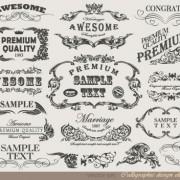 Link toRetro calligraphy design elements vector graphic 04
