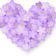 Link toVector flowers heart design elements 02