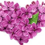 Link toVector flowers heart design elements 04