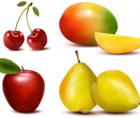Fresh Fruits design vector set 03
