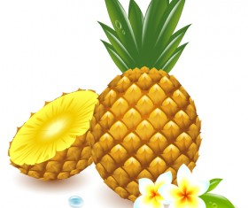 Fresh Pineapple vector graphic