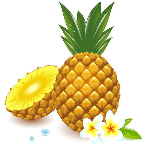 pineapple-cartoon Images - Frompo - 1