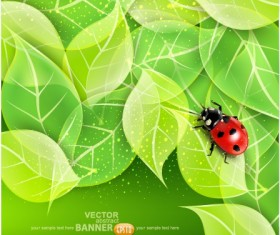 ladybug with Leaves vector backgrounds 02