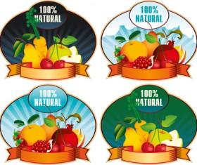 Natural fruit elements labels vector