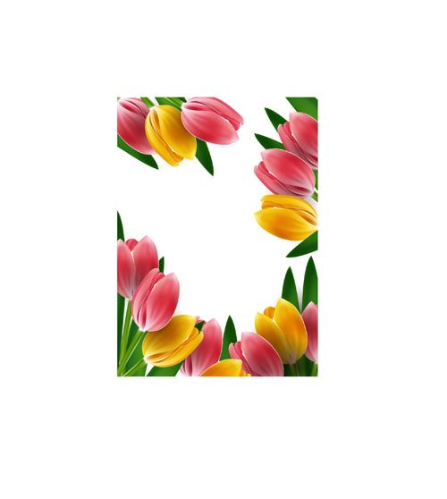 Tulips frames vector 02 - Vector Flower free download