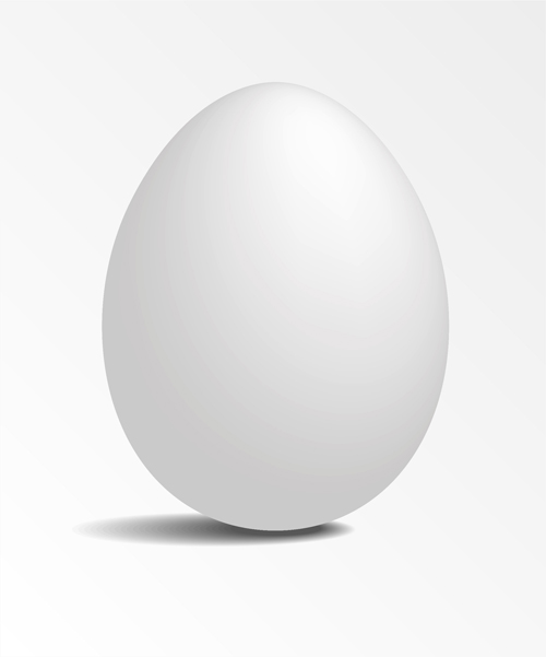 Egg Vector Logo White Eggs Design Vector
