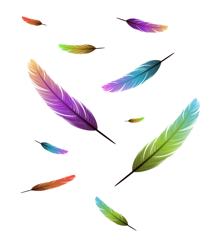 Feather design elements vector Illustration 03