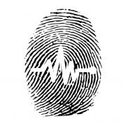 Link toDifferent fingerprints design elements vector 06