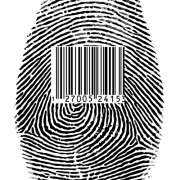 Link toDifferent fingerprints design elements vector 09