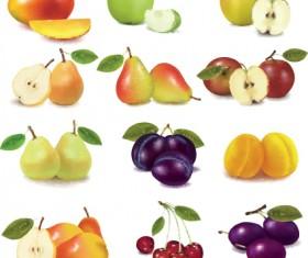 Various Fresh fruit design elements vector 02