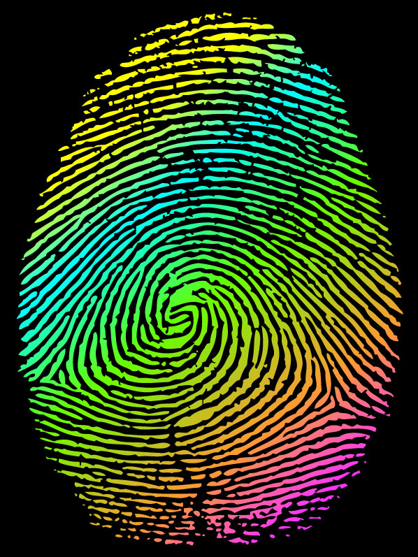 Vector set of fingerprints design elements 01