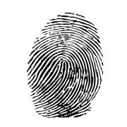 Link toVector set of fingerprints design elements 03