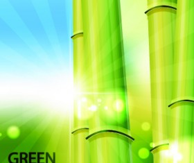 Vector Bamboo design elements background 01