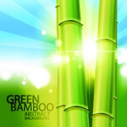 Link toVector bamboo design elements background 05