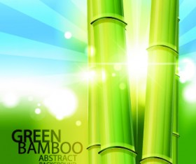 Vector Bamboo design elements background 05