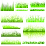 Link toVector green grass elements set 06