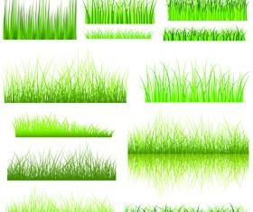 Vector Green Grass Elements set 06