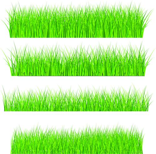 Vector Green Grass Elements set 08 - Vector Plant free download