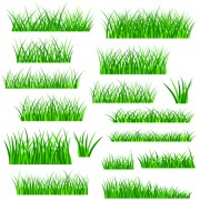 Link toVector green grass elements set 09