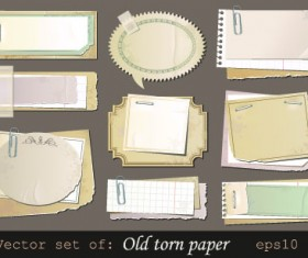 Vector set of Isolated tattered notebook paper 01