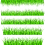 Link toVector green grass elements set 01