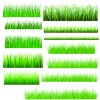 Vector Green Grass Elements set 04