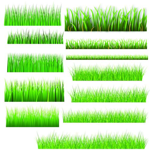 Vector Green Grass Elements set 04 - Vector Plant free download