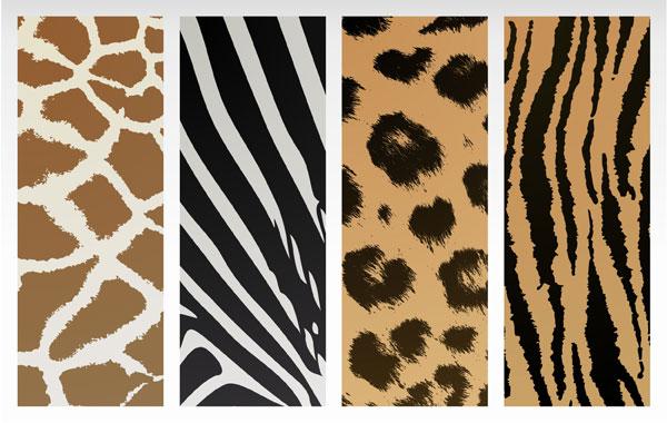 Animal texture background