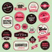 Link toVector labels discounts sale set 04