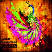 Peacock backgrounds 01