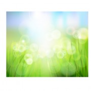 Link toBright spring backgrounds 05