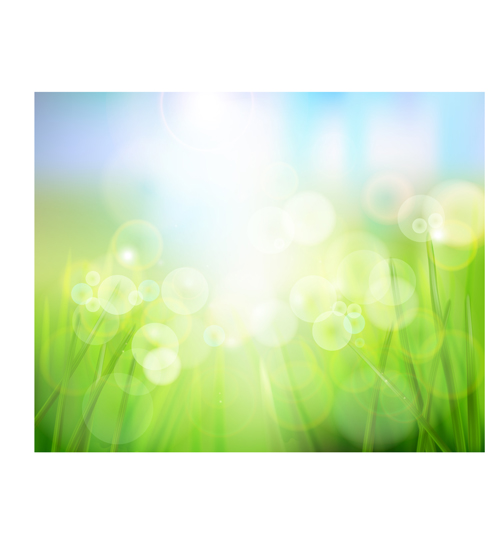 Bright Spring backgrounds 05