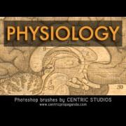Link toPhysiology photoshop brushes