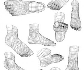 3D model of human foot style vector