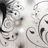 Swirls and Seeds Photoshop Brushes