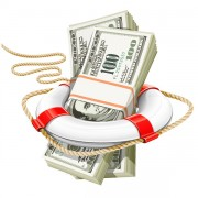 Link toLifebuoy with dollars vector