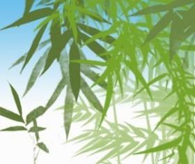Bamboo Photoshop Brushes