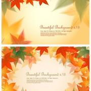Link toMaple leaf background design vector