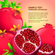 Link toVector organic food backgorunds 05