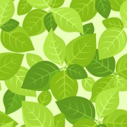 Link toPlant and spring design vector 01