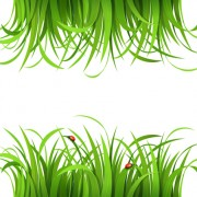 Link toPlant and spring design vector 07