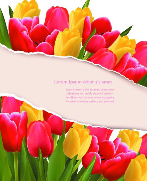 Vivid Tulips Backgrounds Vector 03 Free Download