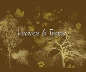 Leaves and trees Photoshop Brushes