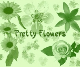 Pretty Flowers Photoshop Brushes