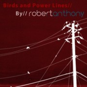 Link toBirds and power lines photoshop brushes