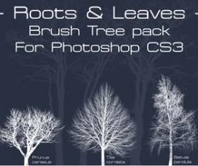 Tree Brushes Pack Photoshop Brushes